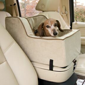 Owners Of Small Dogs Have Been Looking Into Getting Car Seats For Their These Hold The Dog In So That They Do Not Move All Over Place
